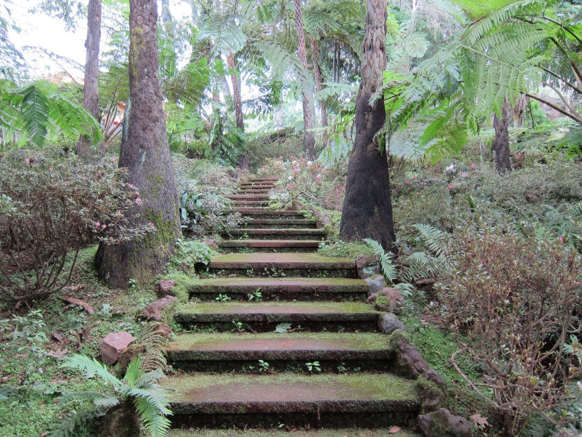 mystical-stairs-993045_1920